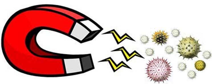 Electrostatic Filter Magnet